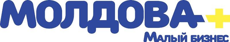 Идеи малого бизнеса в молдове идеи мелкого частного бизнеса