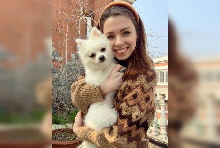 Посольство Украины отказало девушке в эвакуации из Ухани из-за её собаки